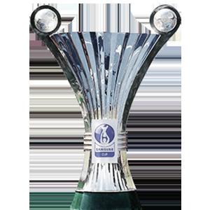 Österreich Vizepokalsieger