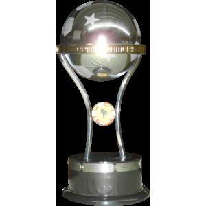 Copa Sudamericana Finalist