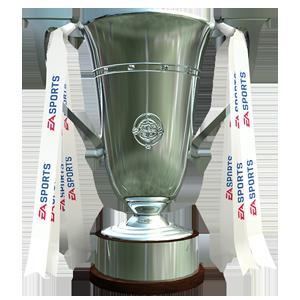 Irland Vizepokalsieger